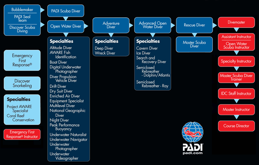 St Maarten Dive Adventures Padi Courses And Certifications